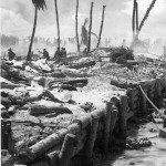 Water Buffaloes and Alligators: Military Amtracs in World War II