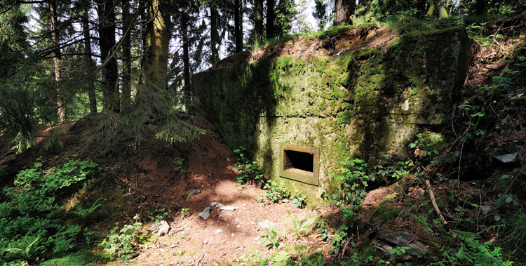 More than 70 years after the battle for the Hürtgen Forest ended, this concrete German bunker remains menacing and is indicative of the many strongpoints American GIs encountered during the fighting there.