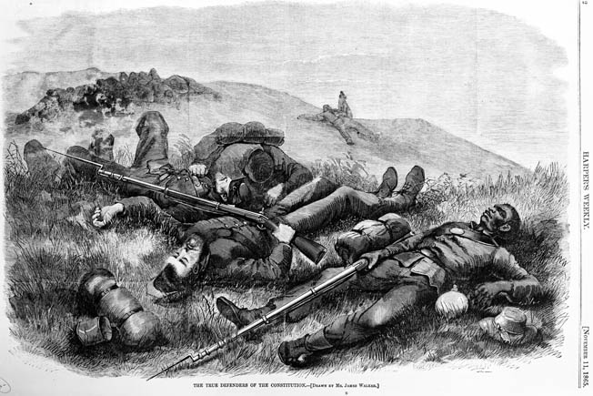 Artist James Walker broke new ground in 1865 by showing dead black and white soldiers lying together on an unnamed battlefield.