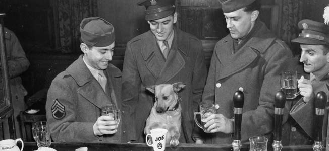 """At a local British pub, """"Sergeant Joe Kodachrome"""" enjoys his nightly ration of milk and bitters with his comrades, who have to make do with beer."""