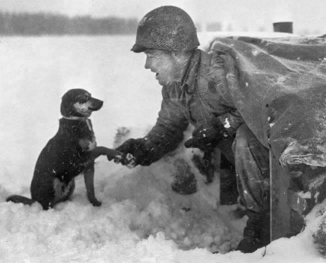 Here, an infantryman leans out his pup tent to shake hands with a dog in Luxembourg's frozen landscape during the Battle of the Bulge. The weather was certainly cold enough to make a wet nose dry.
