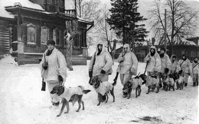 Soviet Red Army soldiers and their antitank dogs, wearing white winter camouflage, head for the front as the Germans close to within a few miles of Moscow in 1941. The dogs were trained to run under German tanks with mines strapped to their backs, blowing themselves up and taking the vehicles with them.