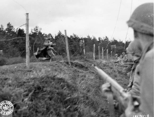 A German soldier surrenders to the 9th infantry division.