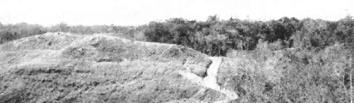 Jacob Vouza's Defiant Stand During the Guadalcanal Campaign