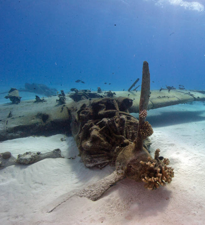 The engine and propeller of a Japanese Aichi E13A Jake reconnaissance floatplane lie off the coast of Saipan, where the plane was lost in action during World War II.