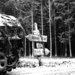 Lt. Col. Joachim Peiper's Grisly Death After the Battle of the Bulge