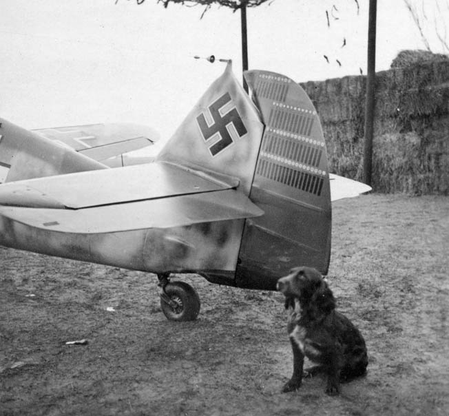 A volume of rare photos from the glory days of the Luftwaffe provides a glimpse of life and combat in Hitler's air arm.