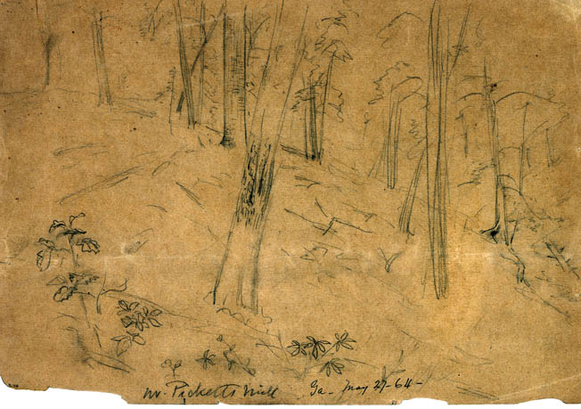 Battlefield artist Alfred Waud made this quick sketch of the bullet-devastated landscape at Pickett's Mill.