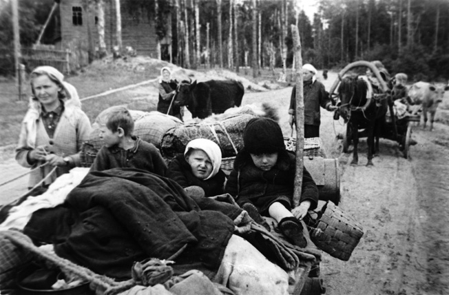 With cattle, children, and all the possessions they could cram into their wagons, civilians escape from the approaching German invaders near Leningrad, July 1941. Over 16 million Soviet citizens became refugees—probably the largest mass migration in history.