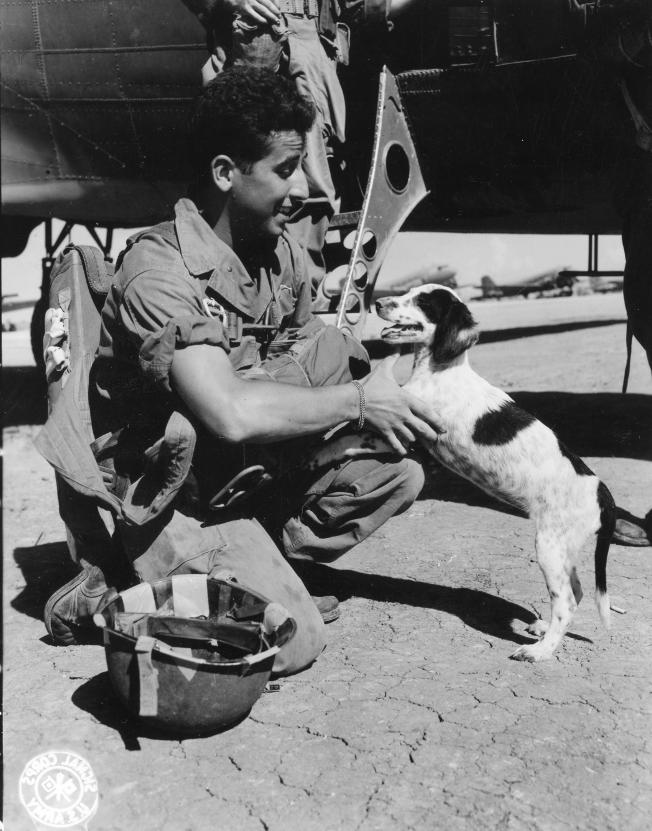 """This photo shows """"Jumper,"""" ironically named because he didn't get to make the jump along with his paratrooper pals. To Jumper's left is paratrooper George R. Vespa of the 11th Airborne Division. The two said goodbye to one another before Vespa left for the Luzon Island jump."""