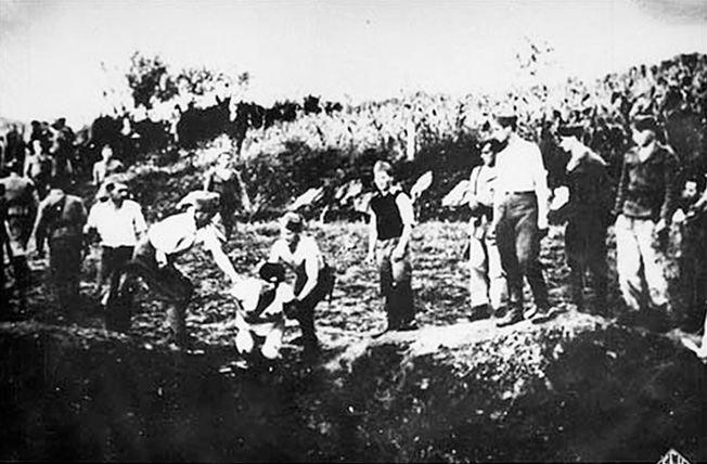 Ustaše militia execute prisoners near the Jasenovac concentration camp.