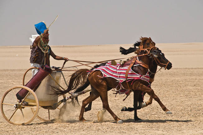 A reproduction Egyptian chariot in action. Scientists believe that ancient Egyptian chariots may have incorporated various advanced features, such as shock absorbers, antiroll bars, and a convex-shaped rear-view mirror.