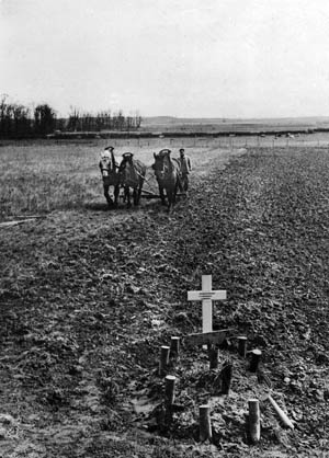 A farmer guides his team of plow horses around a British soldier's grave in his field near Caen.
