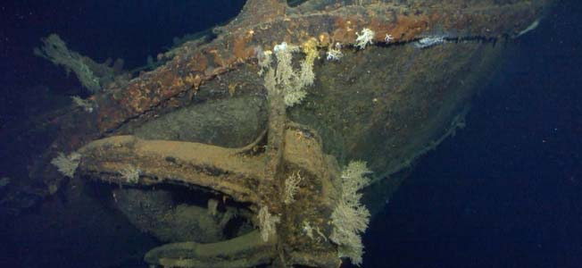 Billionaire Paul Allen claims to have found the Japanese battleship Musashi, sunk during the Battle of Leyte Gulf.