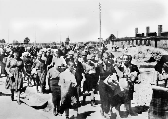 Irma's victims: Hungarian Jews, most of whose heads have recently been shaved, march through Auschwitz-Birkenau, June 1944. Most would die in the gas chambers.