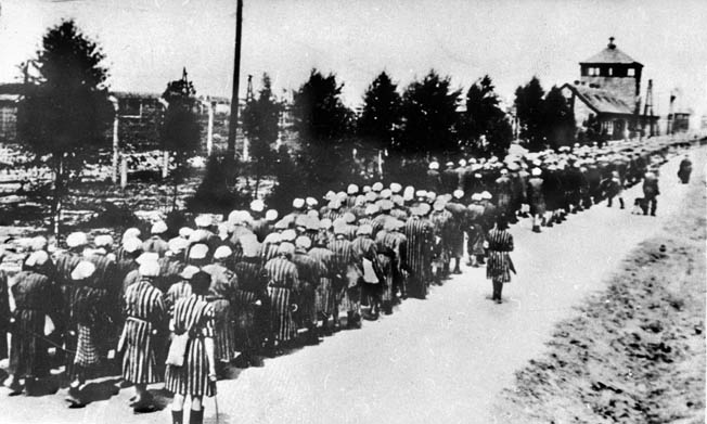 Female prisoners at Auschwitz-Birkenau return from a work detail. Inmates here were especially fearful of Grese and her sadistic excesses.