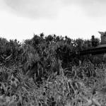 Kerama Retto: Key to Victory at Okinawa