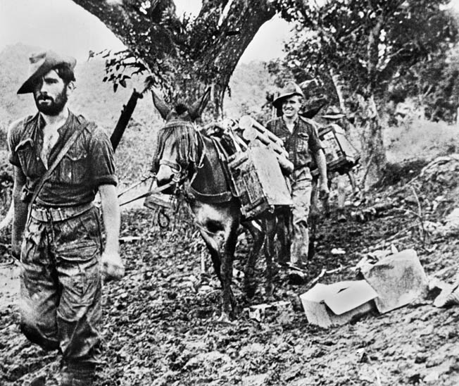 During their long-range missions behind Japanese lines, the Chindits relied on resupply by air and supplies were frequently gathered and packed aboard mules for ground transportation. This photo is a still from a film documentary on the Chindits.