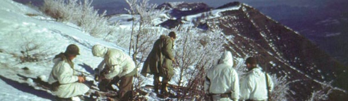 The 10th Mountain Division: Taking the Po Valley During War In Italy