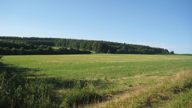 This modern view of the battlefield at Crossroads X near the Barriere Hinck shows the gentle ridge that Company B troops used as concealment prior to launching their devastating attack on a German column traversing the Salle Road, seen in the distance.