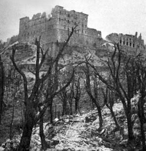 Although German authorities asserted that their troops had not occupied the Benedictine abbey of Monte Cassino, Allied commanders wanted it bombed. After the aerial bombardment that left the abbey in ruins, German paratroopers did occupy the rubble and put up stiff resistance against Allied troops.