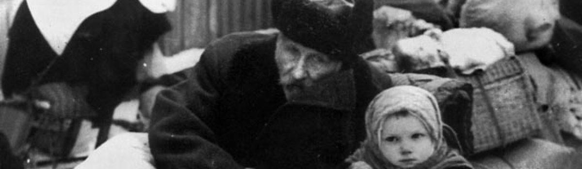 Leningrad: A Survivor's Story