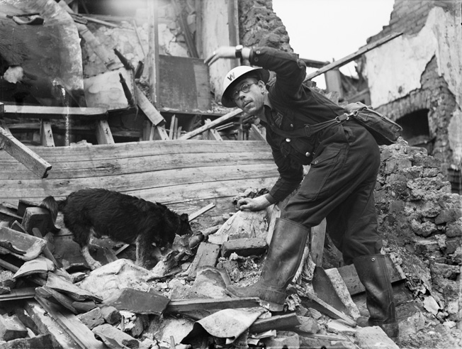 In the aftermath of an August 1941 air raid on a London suburb, a dog named Rip helps an Air Raid Precautions warden during the search for survivors.