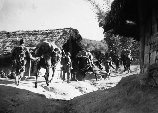 Moving through the friendly Kachin village of Nama in Burma on January 15, 1945, mules are laden with much-needed supplies for the 475th Infantry.