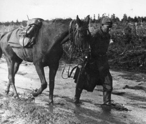 Slogging through mud on the Eastern Front, a German soldier leads his horse forward.