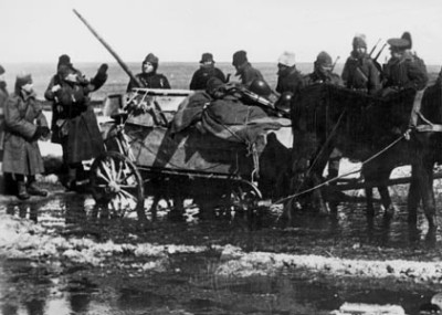 Romania's Disaster at Stalingrad
