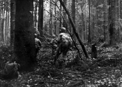 Hell in a Dark Wood