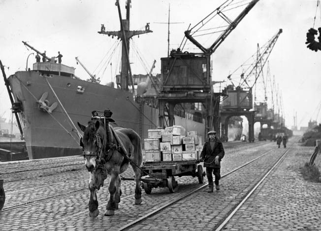 """With a """"Liberty ship"""" visible behind him, a Belgian civilian worker escorts his horse-drawn cart loaded with military supplies at the repaired Antwerp dock facilities."""