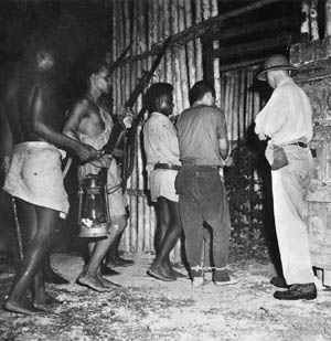 Armed native scouts trained and commanded by Captain Donald Kennedy escort a captured Japanese pilot into captivity at the Segi coastwatchers' station on New Georgia, March 1943.