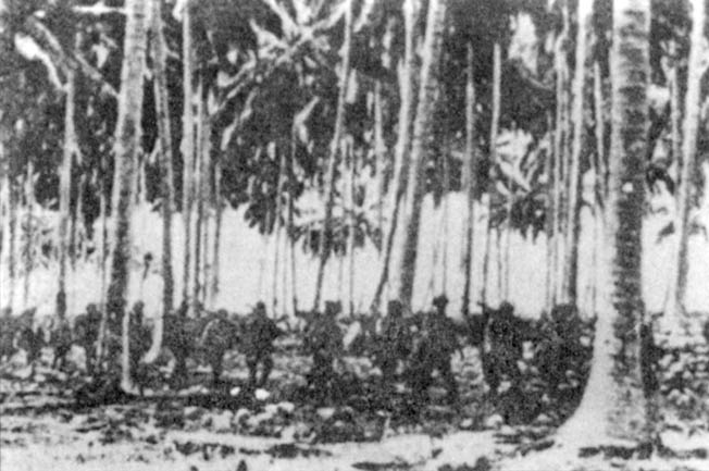 Elite Japanese soldiers of the Kawaguchi Detachment pick their way through a coconut grove on Guadalcanal prior to launching an attack against Henderson Field, the island's vital airstrip.