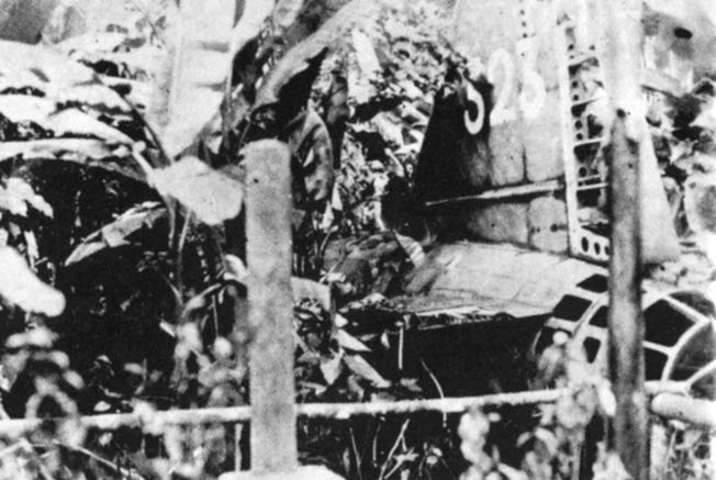 Wreckage of the aircraft in which Yamamoto was being shuttled lies on the jungle floor of Bougainville Island.