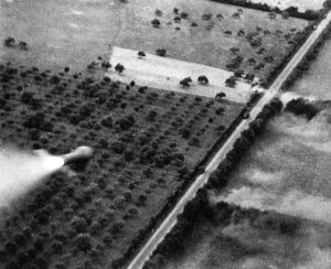 Closing the Falaise Pocket