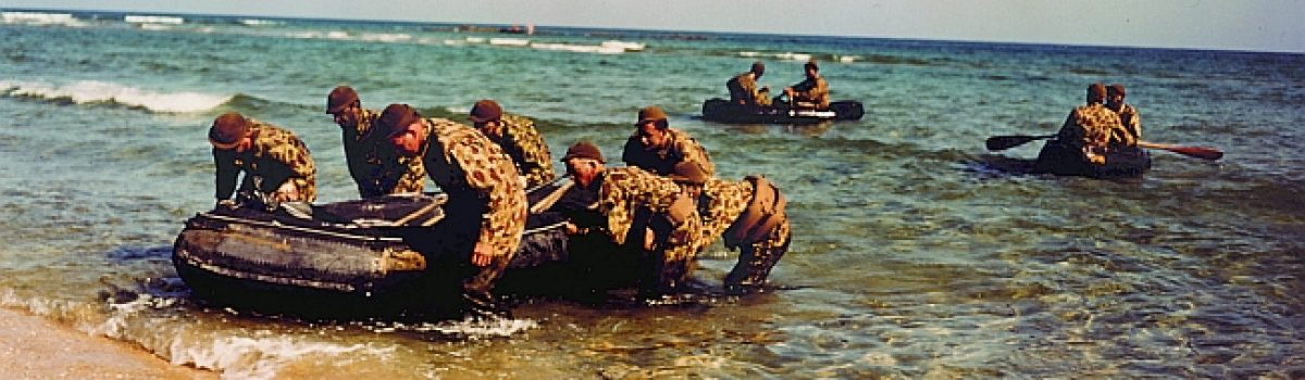SEALs: the Birth of the Navy's 'Special Warfare' Force